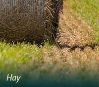 box-ag-hay