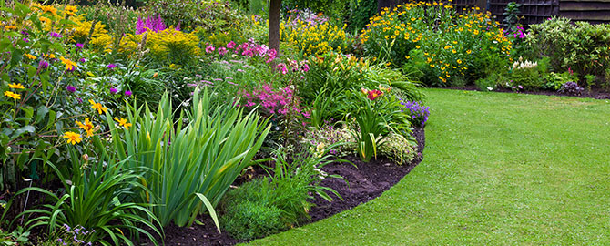 landscape-slider-beddingplants-ornamentals