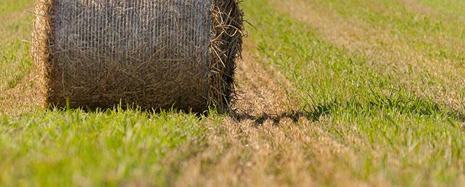 ag-slider-hay