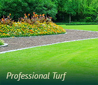 box-turfgrass-proturf